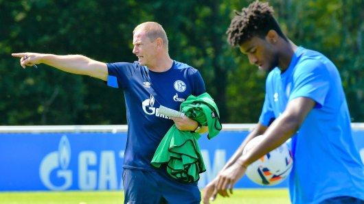 Haji Wright (rechts) trainiert wieder unter der Anleitung von Schalkes U23-Trainer Torsten Fröhling.