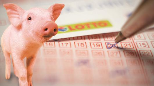 Die Chinesen haben mit ihrem Neujahrsfest im Februar das Jahr des Schweins eingeläutet. Und in unserer globalisierten Welt werden auch wir von diesem Glücksbringer eine ganze Menge mitbekommen. Zwölf Monate ganz im Zeichen von Glück und Reichtum – da muss man doch einfach mal Schwein haben.