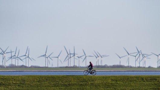 Ein Mann fährt auf dem Deich vor Windrädern mit seinem Fahrrad.