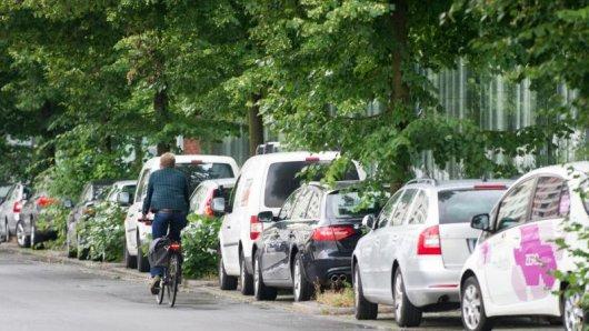Gefahr für den Lack:Wer sein Auto unter Bäumen abstellt, muss damit rechnen, dass Honigtau, Vogelkot und Harz die Schutzschicht des Wagens angreifen.