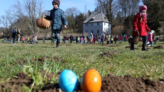 Die Stadt Bochum veranstaltet keine Suchaktion zu Ostern, dafür aber ein gemeinnütziger Verein. (Symbolbild)