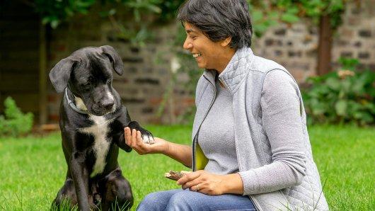 Lisa Frost aus Herne hat sich einen Mischlingswelpen zugelegt. Jetzt unterstellen ihr die Behörden, dass der Hund illegal eingeführt sei und einer verbotenen Hundesrasse angehöre.