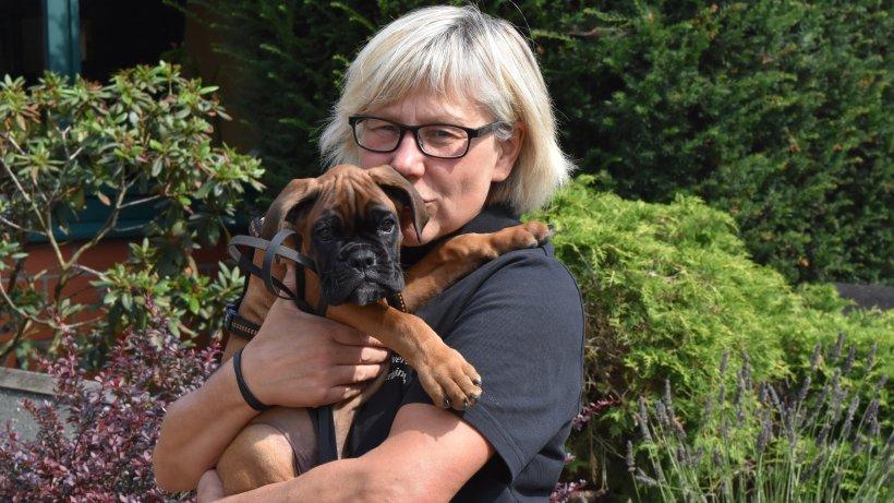 Hunde-Drama in Bochum: Herrchen lässt Eddy an Laterne vor Tierheim zurück – und kommt nie wieder