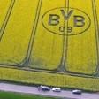 Zwei Fans von Borussia Dortmund mähten ein riesiges BVB-Logo in ein Rapsfeld.