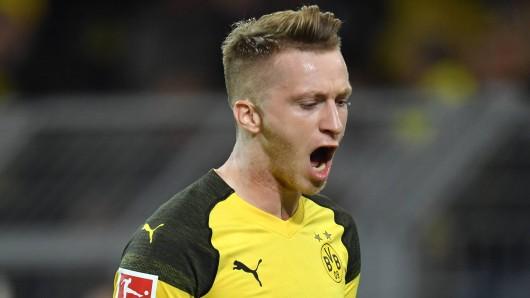 Bayer Leverkusen gegen Borussia Dortmund im Live-Ticker: Hier gibt's alle Infos!