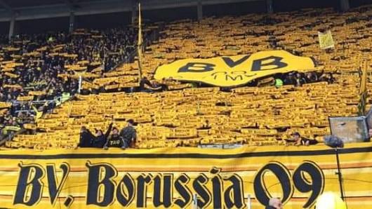 BVB Mainz