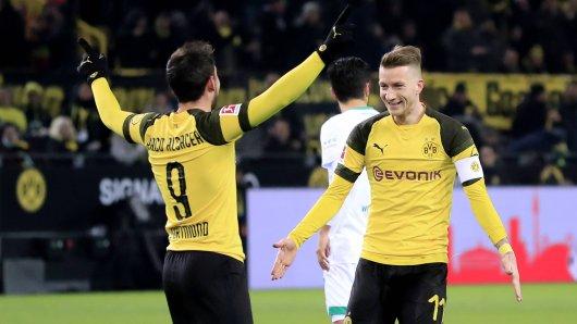 Bei Borussia Dortmund melden Marco Reus und Paco Alcacer sich zurück.