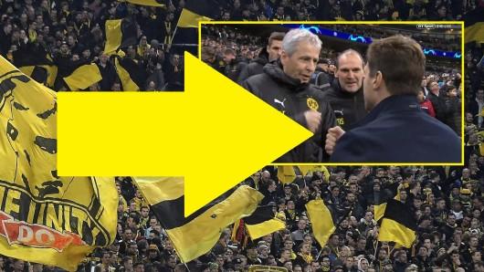 Fußballfans feierte beim Spiel zwischen Tottenham Hotspur und Borussia Dortmund eine ganz bestimmte Aktion von Lucien Favre.
