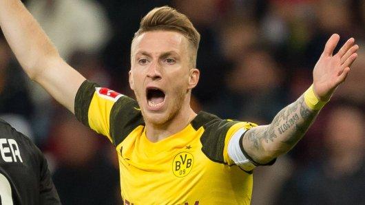 Borussia Dortmund will am Sonntag gegen Bayer Leverkusen zurück in die Erfolgsspur finden.