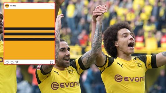 Nach Instagram-Post von adidas glaubten viele Fans von Borussia Dortmund, der BVB bekäme bald einen neuen Ausrüster
