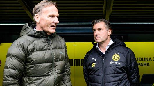 Borussia Dortmund: Aki Watzke und Michael Zorc verkaufen vielleicht einen Stürmer an einen Bundesligisten.