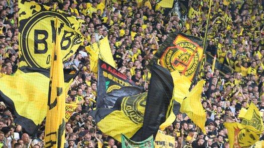 Fans von Borussia Dortmund können ihren Herzensverein demnächst live im Free-TV sehen.