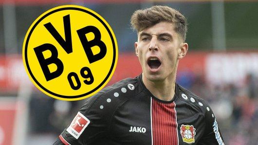 Wechselt Kai Havertz im nächsten Jahr zu Borussia Dortmund?