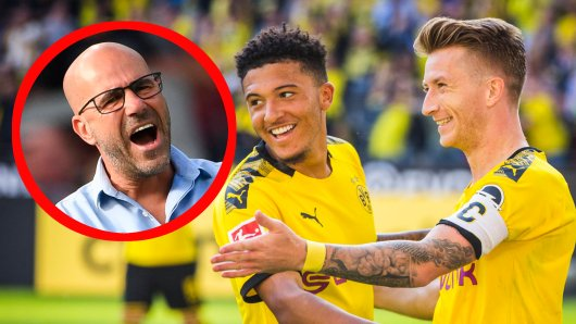Borussia Dortmund besiegte Bayer Leverkusen 4:0, und Peter Bosz war ganz schön bedient.