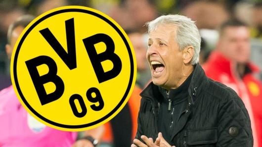 Lucien Favre und Borussia Dortmund sind am Sonntagabend bei Eintracht Frankfurt zu Gast.