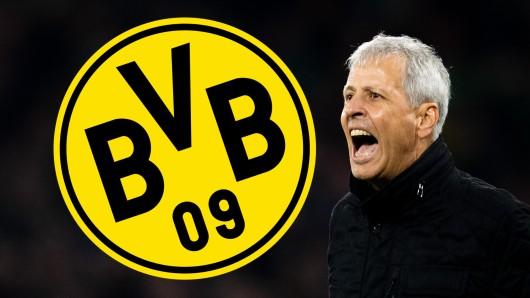 Rund um Borussia Dortmund kursierten zu Wochenbeginn Gerüchte um Lucien Favre.