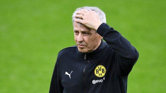 Borussia Dortmund: Die Bosse sollen bereits einen Kandidaten im Visier haben, sollte Lucien Favre beim BVB scheitern.