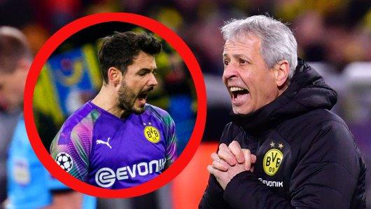 Lucien Favre und die BVB-Fans wussten ganz genau, bei wem sie sich nach dem 2:1 von Borussia Dortmund gegen Slavia Prag zu bedanken hatten.