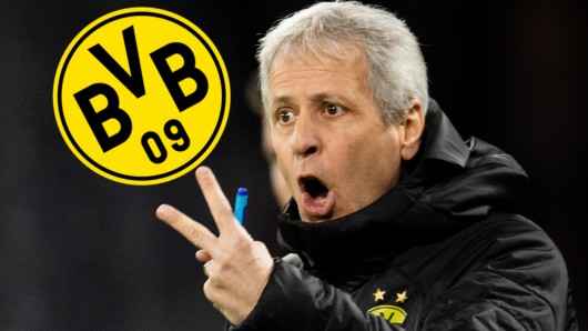 Lucien Favre hat bei Borussia Dortmund in der Winterpause zwei Aufgaben vor der Brust.