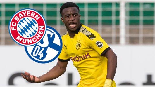 BVB-Juwel Youssoufa Moukoko wird eine große Bundesliga-Karriere vorausgesagt – etwa bei Bayern oder Schalke?