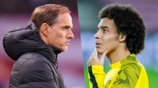 Axel Witsel, Mittelfeldmotor von Borussia Dortmund, kennt Thomas Tuchel nicht.