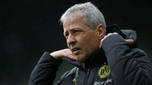 Angesprochen auf BVB-Youngster Giovanni Reyna wird Lucien Favre deutlich.