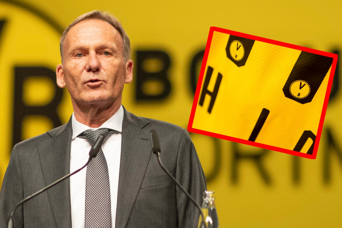 Borussia Dortmund Andert Sein Logo So Sieht Es Jetzt Aus Derwesten De