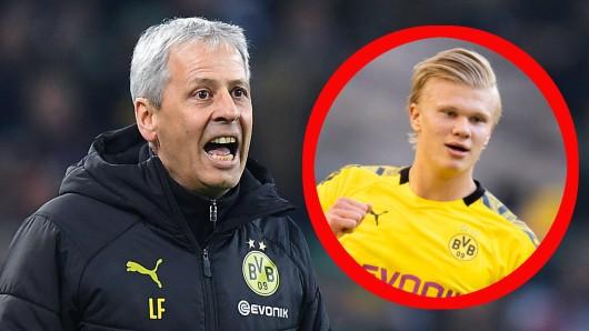 Lucien Favre muss Erling Haaland bei Borussia Dortmund regelmäßig bremsen.