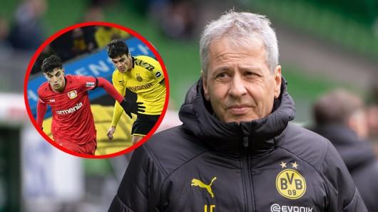 Lucien Favre schwärmt bei Borussia Dortmund in den höchsten Tönen von Giovanni Reyna.