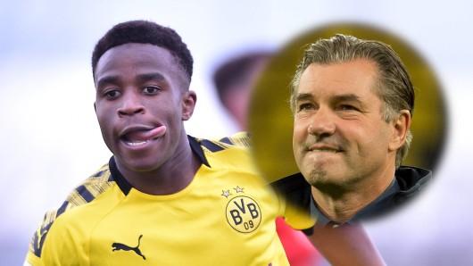 Borussia Dortmund zieht Youssoufa Moukoko zur neuen Saison zu den Profis hoch.