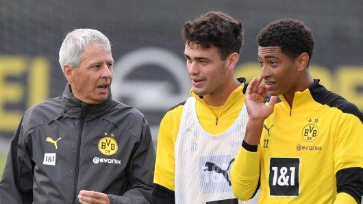 Bei Borussia Dortmund hält Lucien Favre große Stücke auf die beiden 17-Jährigen Gio Reyna und Jude Bellingham.