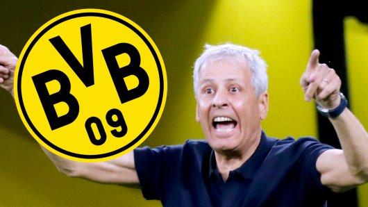 Lucien Favre darf bei Borussia Dortmund mit vielen jungen Talenten arbeiten.