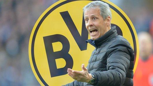 Bei Borussia Dortmund spricht Lucien Favre Klartext über die Belastungssteuerung.