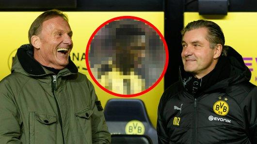 BVB: Da haben die Bosse gut Lachen.