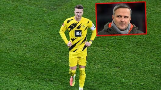 Borussia Dortmund muss sich deutliche Worte von Sky-Experte Didi Hamann anhören.