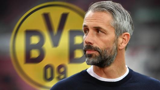 Borussia Dortmund könnte mit der Verpflichtung von Marco Rose eine Kettenreaktion auslösen.