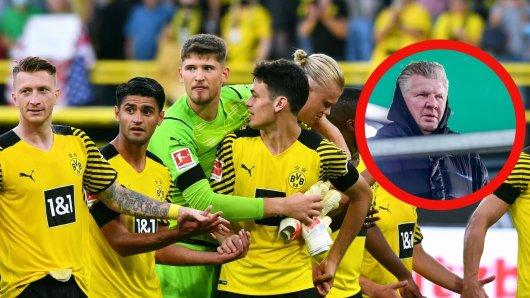 Borussia Dortmund: TV-Experte und Bayern-Legende Stefan Effenberg bringt jetzt einen BVB-Star beim deutschen Rekordmeister ins Gespräch.