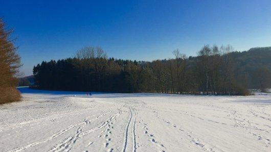 Auch bei Schnee macht das Laufen Spaß.