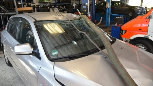 Der Ast traf das Auto einer jungen Frau aus Castrop-Rauxel frontal.