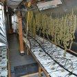 Im Dachgeschoss stellte die Polizei die illegalen Drogen sicher.