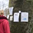 Der Baum in Bissingheim hat immer neue Notizen. Hier kann jeder schauen, was gerade im Stadtteil los ist.