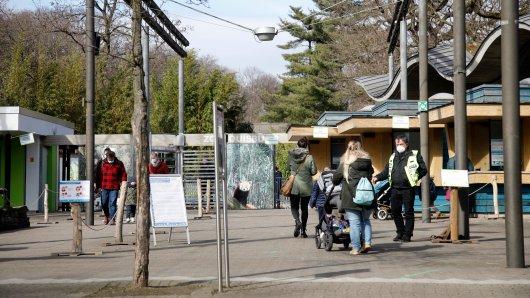 Der Zoo Duisburg verkündete eine schöne Nachricht. (Symbolbild)