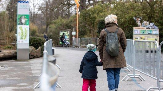 Im Zoo Duisburg wurde eineEntdeckung gemacht. (Symbolbild)