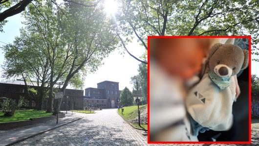 """""""Teddy"""" ist weg - der Sohn der Essenerin Patricia Allendorf"""