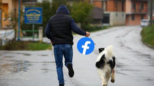 Hund in Essen: Ein Mann staunt nicht schlecht wie viele Hunde-Experten es bei Facebook gibt. (Symbolbild)