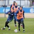firo : 13.01.2017, Fu§ball, 1.Bundesliga, Saison 2016/2017 FC Schalke 04, Training, REESE und GORETZKA $worldrights,Es gelten unsere AGB, einsehbar auf www.firosportphoto.de, copyright by firo sportphoto: Coesfelder Str. 207 D-48249 DŸlmen www.firosportphoto.de mail@firosportphoto.de (V o l k s b a n k B o c h u m - W i t t e n ) BLZ.: 430 601 29 Kt. Nr.: 341 117 100 Tel:Ê +49-2594-9916004 Fax:Ê+49-2594-9916005