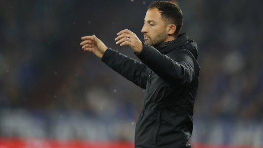 Domenico Tedesco wirkt beim Spiel gegen Bayern ratlos. Aber ist es der Schalke-Trainer auch?
