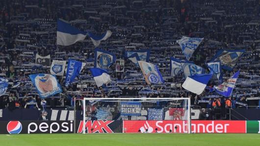 Die Fanwelt des FC Schalke 04 wurde durch schwere Vorwürfe der sexuellen Belästigung erschüttert.