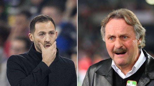 Peter Neururer hat den FC Schalke scharf kritisiert.