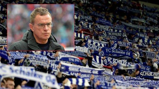 Mit einer Aussage bei einem Fan-Treffen überrascht Ralf Rangnick zahlreiche Schalke-Anhänger.
